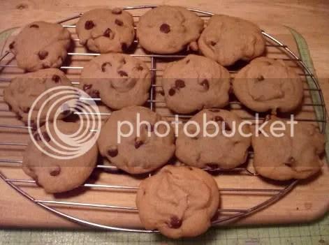 orange agave cookies 01