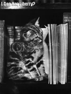 Kitten w books & text reading