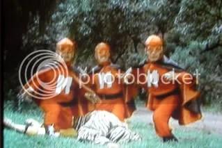 M is for Midget