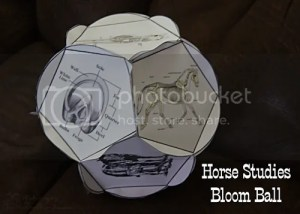 Horse Studies Bloom Ball
