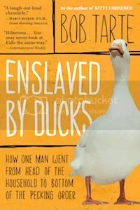 photo 11 enslaved by ducks_zpspe6ky9dc.jpg