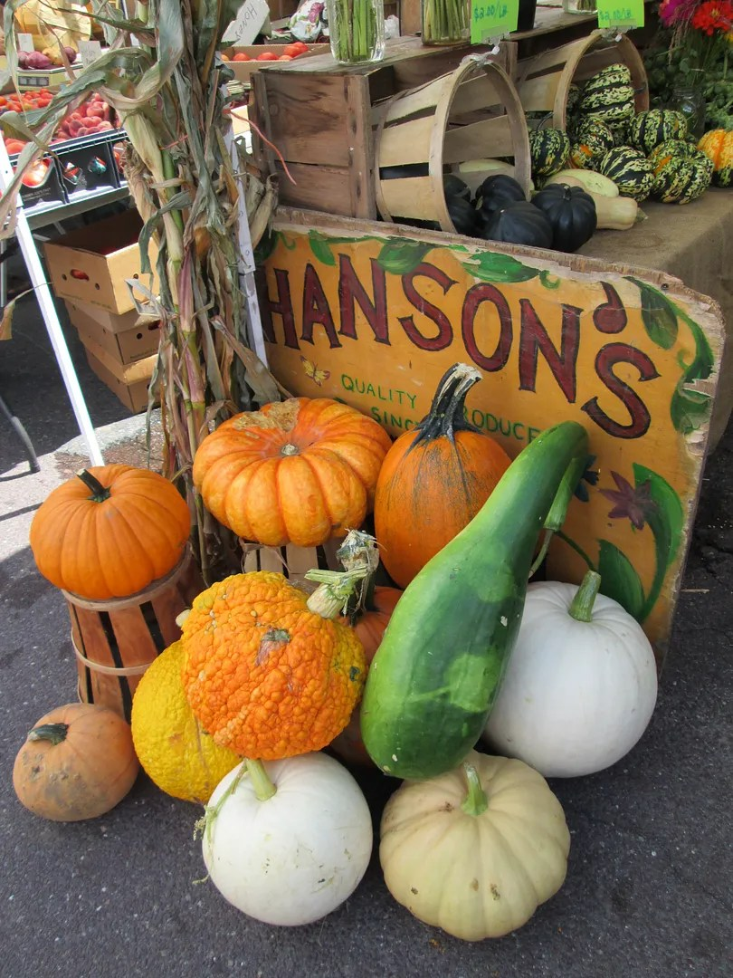 pumpkins and squash at farm stand