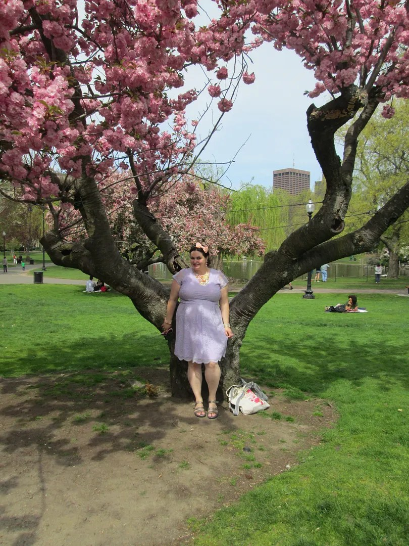 woman in lavender dress in front of pink tree in boston public garden