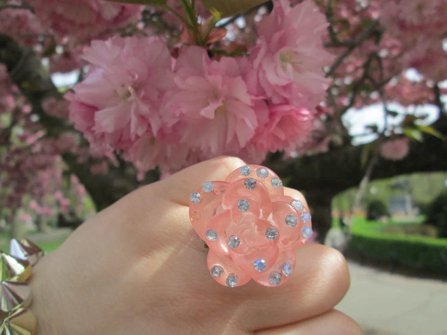 pink rose rhinestone statement ring next to pink cherry blossoms