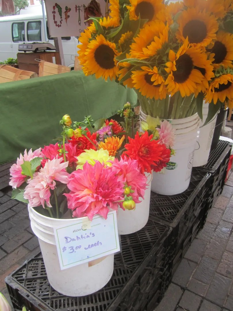 dahlias and sunflowers in white buckets at farmer's market