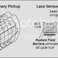 Lace Sensor Wiring Diagram Strat John Deere D140 Lawn Tractor What S Special About Sensors How This Then When Other Pickup Manufacturers Decide To Make Designs As Crazy Does I Ll Say That There Nothing