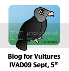 International Vulture Awareness Day 2009