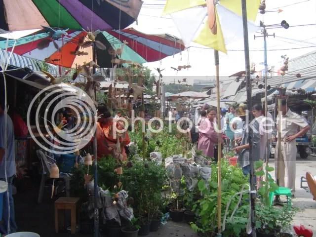 Plant Market Place.