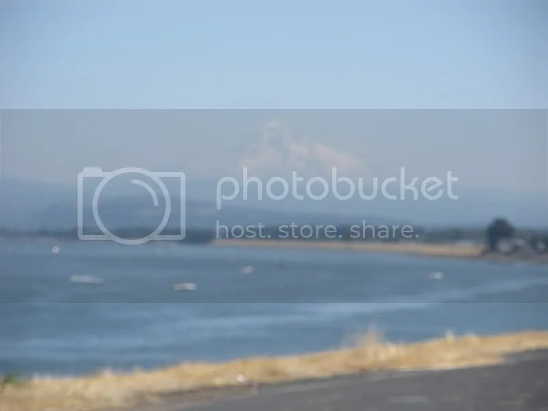 Blurry action shot from Marine Drive trail with Mt Hood in the distance