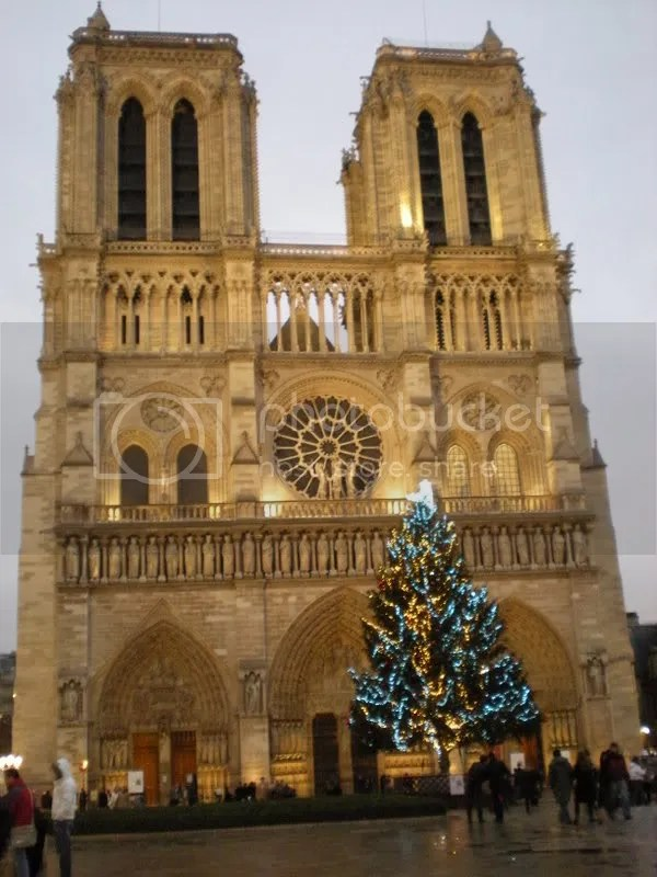 notre dame and christmas tree