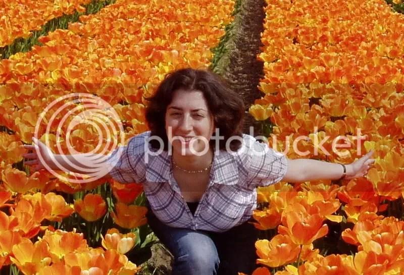 Leiden flower fields