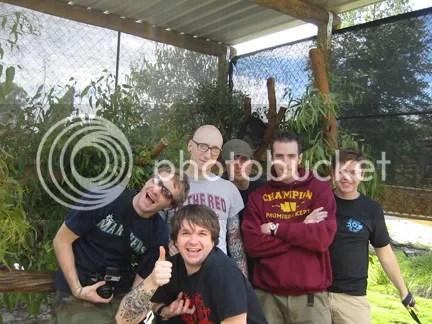 Koala Crew