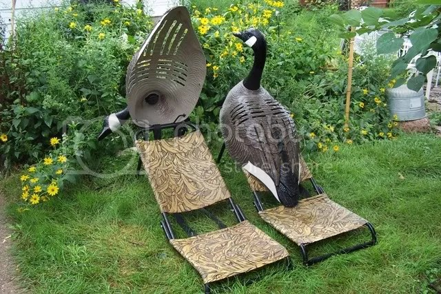 duck hunting chair grosfillex lounge chairs chat hiding a blind need help the honey hole page 2 re