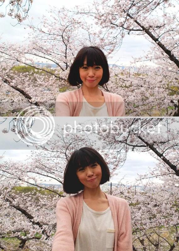 photo bathing in sakura.jpg