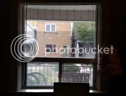 Framed Window
