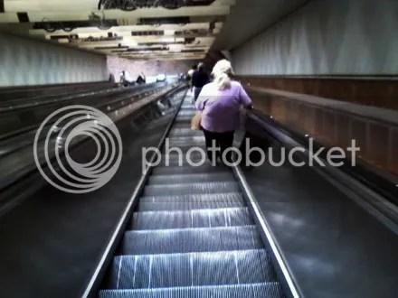 Escalator Forever