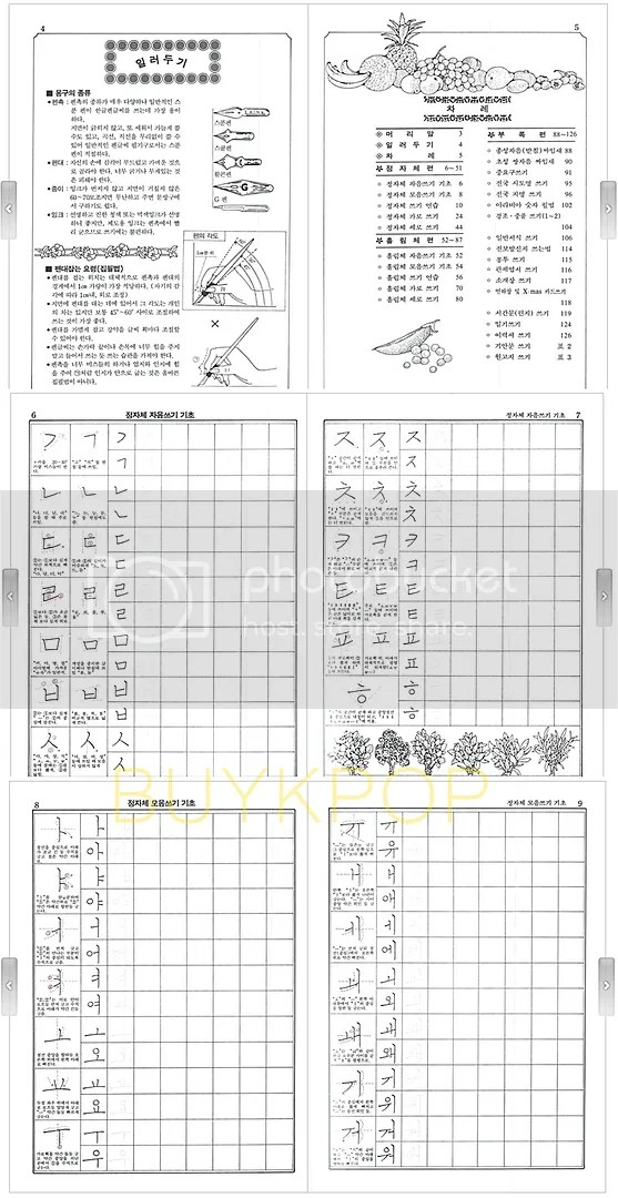 KOREAN WRITING PRACTICE WORK BOOK +DHL ~ALL AGES Learn
