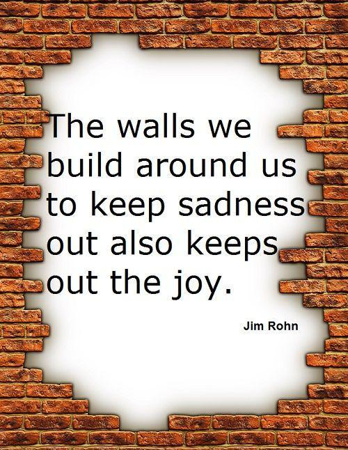 "Image result for ""The walls we build around us to keep sadness out also keeps out the joy."""