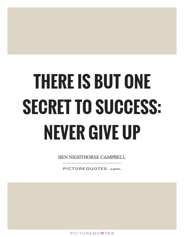 There is but one secret to success: never give up | Picture Quotes