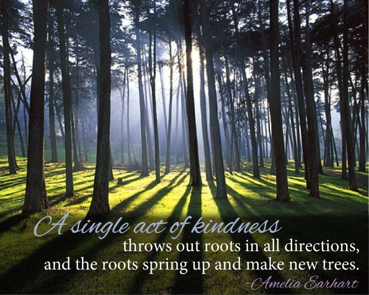 A Single Act Of Kindness Throws Out Roots In All