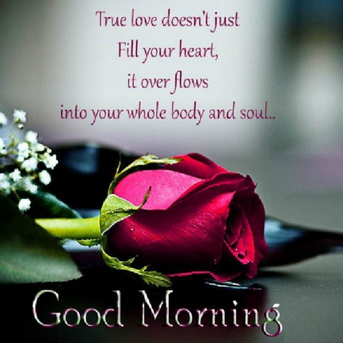 Good Morning Quotes For Lovers (3 Picture Quotes)
