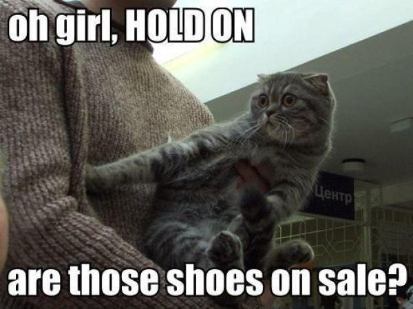 Image result for shopaholic quotes funny
