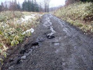 雨で道路が流された