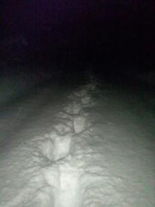 雪道ラッセル