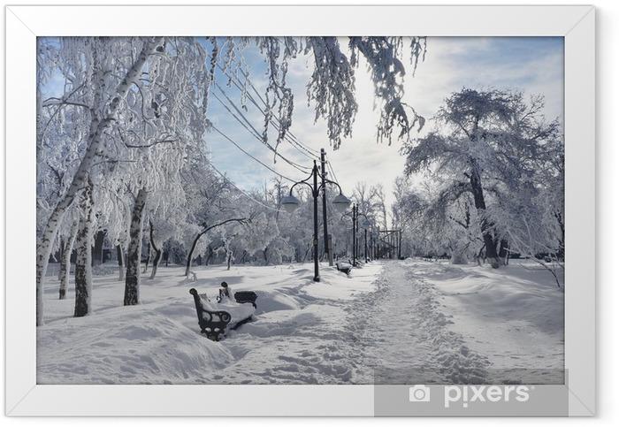 winter park scenery framed
