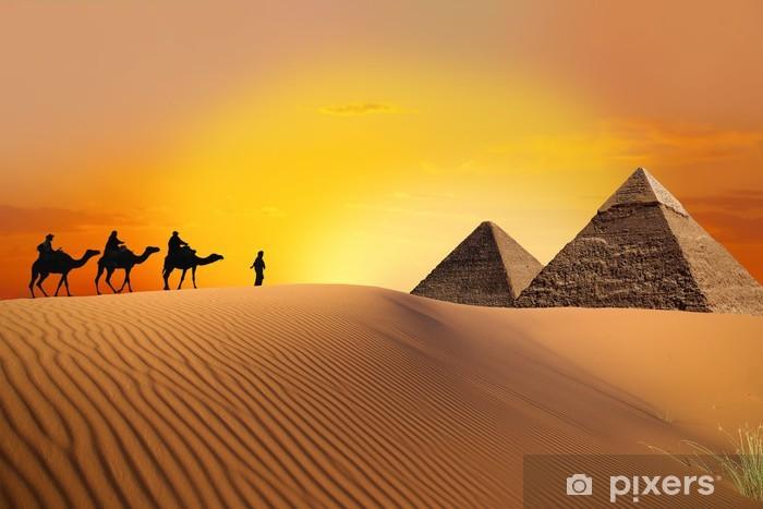 Fototapete Pyramide Kamel und Sonnenuntergang  Pixers