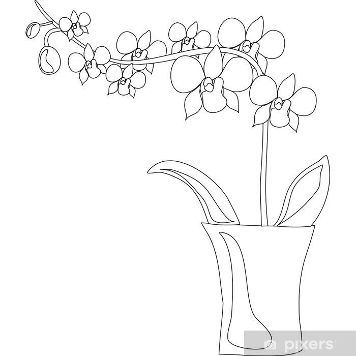 Fototapeta Orchidea • Pixers® - Żyjemy by zmieniać