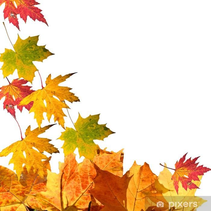 Fototapete Herbst fallende Bltter  Pixers  Wir leben