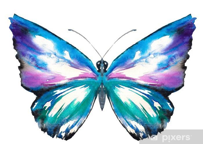 Fototapete Schmetterling Aquarell gemalt  Pixers  Wir