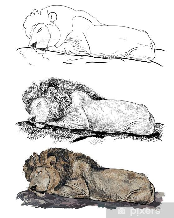 The Lion Sleeping : sleeping, Sleeping, Mural, Pixers®, Change