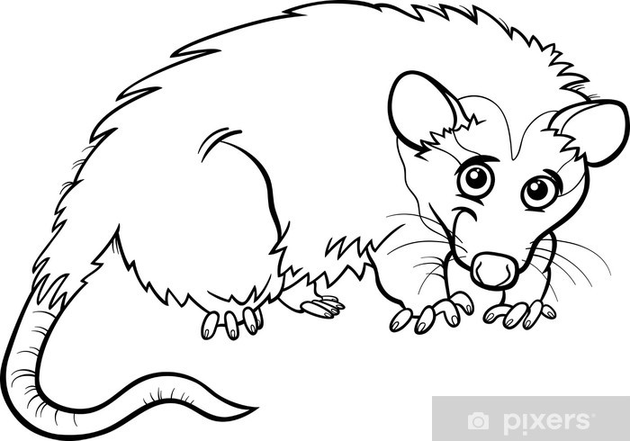 Dibujos Animados De Animales Para Dibujar Faciles