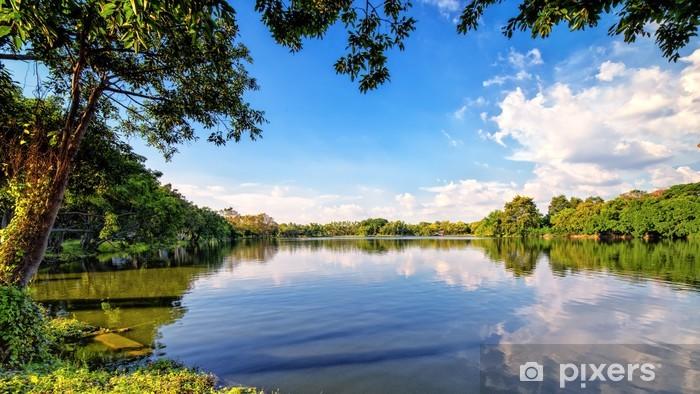Carta da Parati Luminoso paesaggio autunnale nel parco cittadino  Pixers  Viviamo per il cambiamento