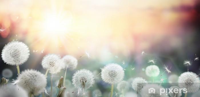 Selbstklebende Fototapete Feld voller Pusteblumen bei Sonnenuntergang  Pixers  Wir leben um
