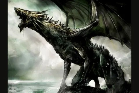 what kind of dragon