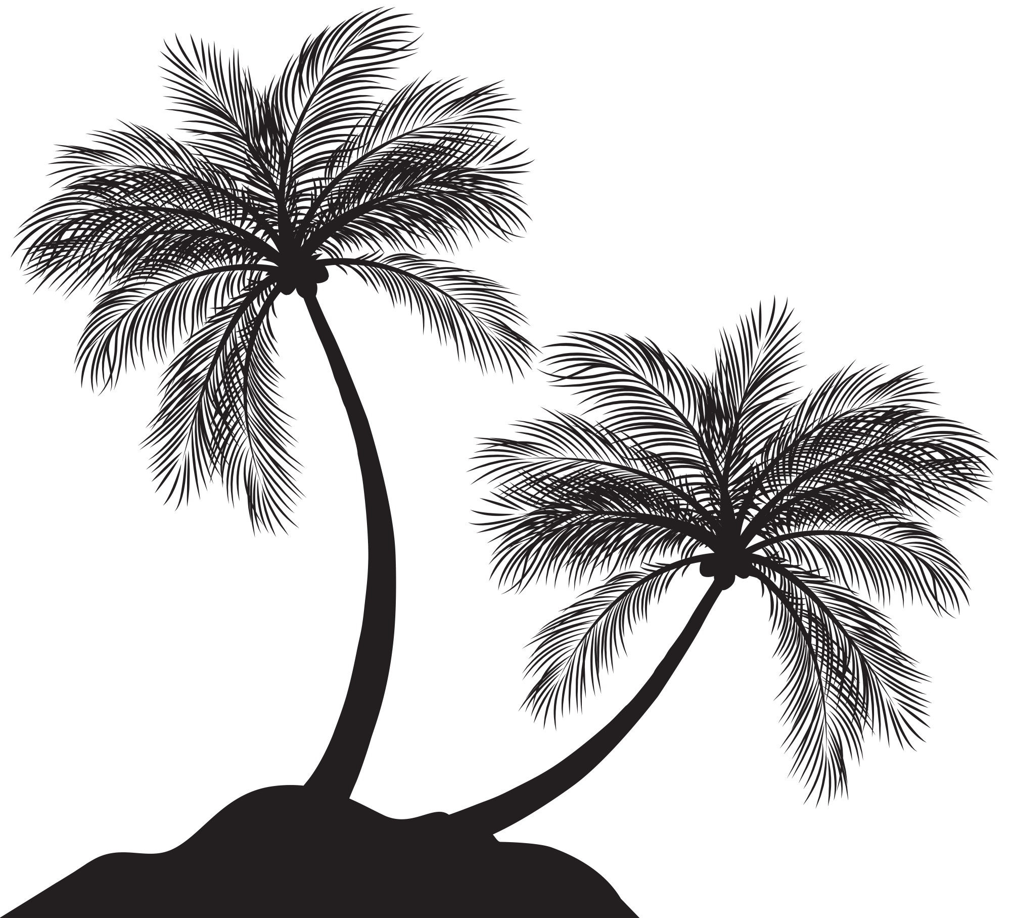 hight resolution of png tree silohuette 100 free clipart palm tree silhouette free images at clker com