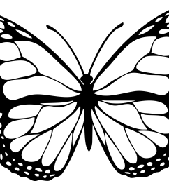 butterfly clipart black and white png 6 png image [ 2400 x 1650 Pixel ]