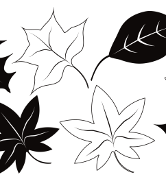 fall leaves clip art a free clip art bundle that s too good to miss  [ 2739 x 1528 Pixel ]