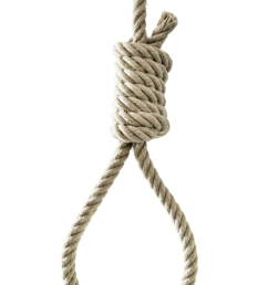 photo png noose 35249 free icons and png backgrounds [ 1000 x 1502 Pixel ]