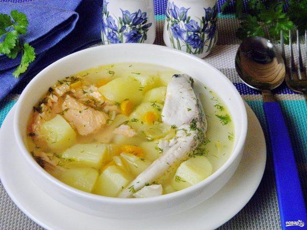 ribnii sup klassicheskii 328674 - Fish soup a classic