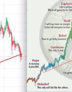 Bitcoin chart compared to wall street cheat sheet  psychology of  market cycle also rh dmania lol