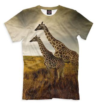 Мужская Футболка Жирафы на прогулке