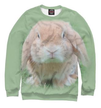 Женский Свитшот Кролик