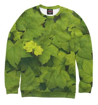 Женский Свитшот Зелёные листья