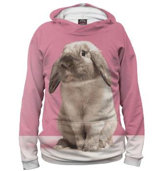 Мужское Худи Кролики
