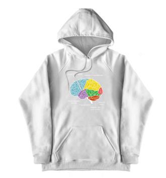 Женский Хлопковый худи Строение мозга