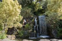Los Angeles Arboretum Arcadia Engagement Ashley Phi